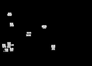 Chapman Leonard Hybrid III+ Line Drawings